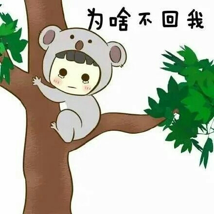 【vivoy33卡通棕熊手机壳】-配饰-3c数码配件