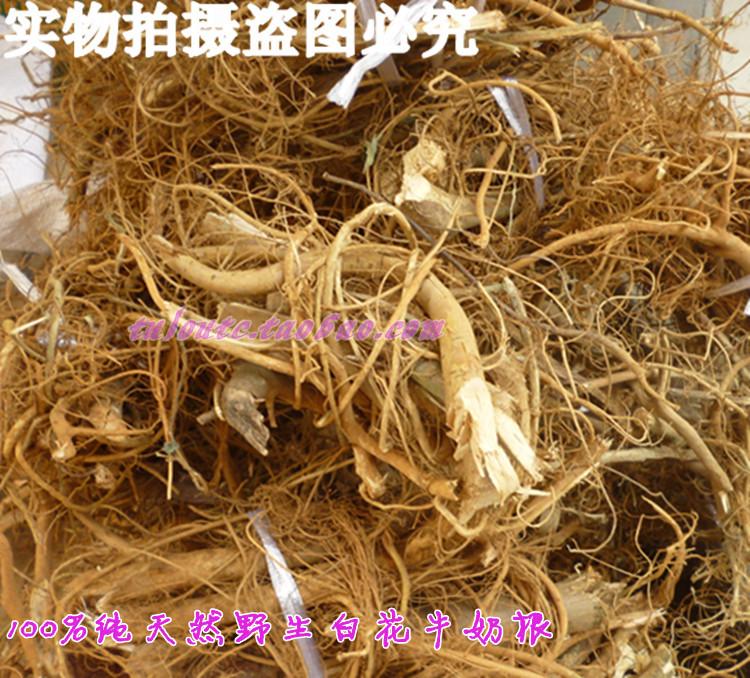 白花牛奶树根的生长环境为深山老林,白花牛奶树根奶树根味道甘中带香