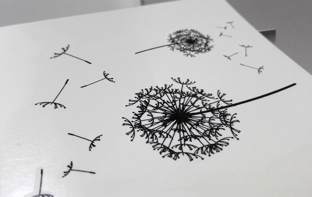 蒲公英纹身手稿小清新分享展示
