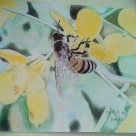 国画动物画 花与蜜蜂birdy独立油画 原创纯手绘家居装饰动物/植物