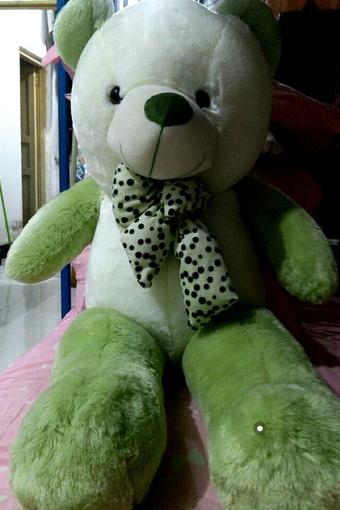 可爱的熊熊*^o^*