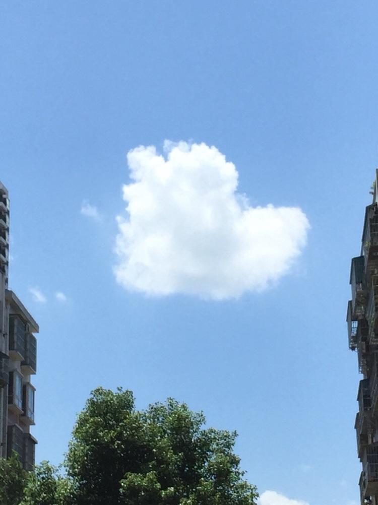 难得一见的心形云图片