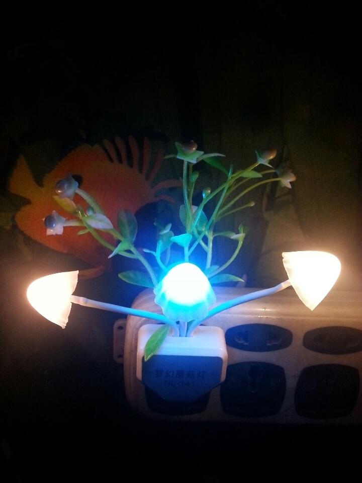 led智能光控小夜灯变光 夜晚自动亮 一年一度电 低碳