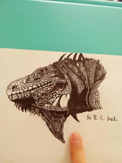 【手绘动物