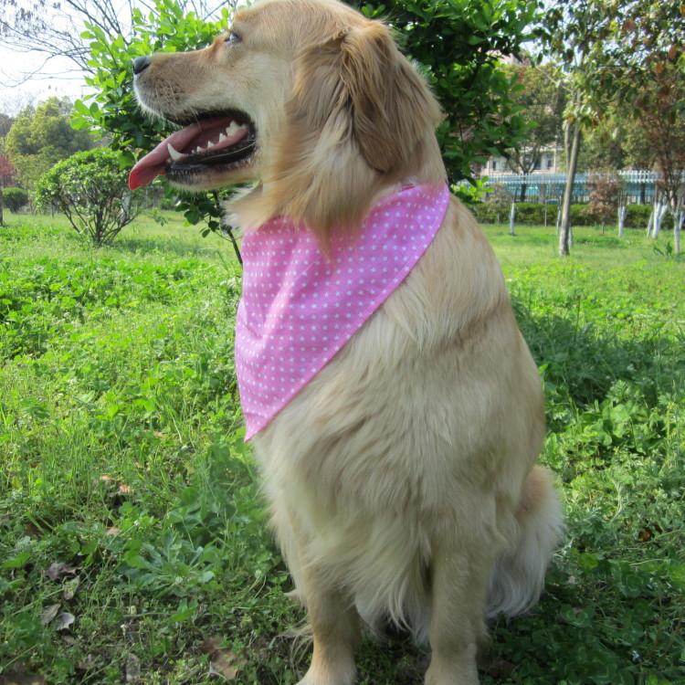 宠物口水兜三角巾中大型犬金毛哈士奇边牧萨摩拉布拉多宠物用品图片